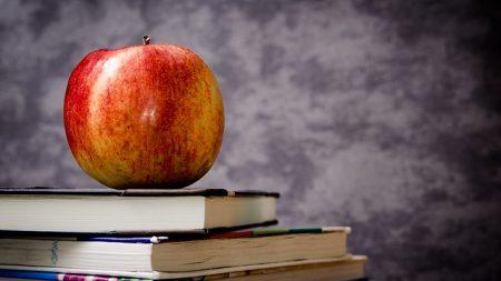 primary-school-tuition
